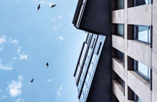 stylish buildings with birds flying high above.